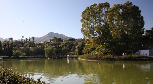 Dingen doen Costa del Sol - De La Paloma park