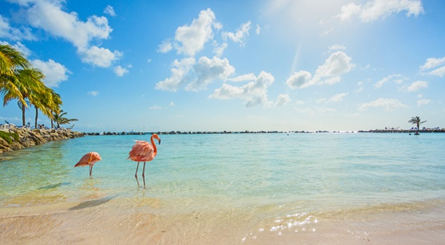 Aruba - zon in februari
