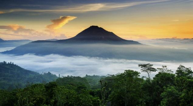 Natuur - Bali