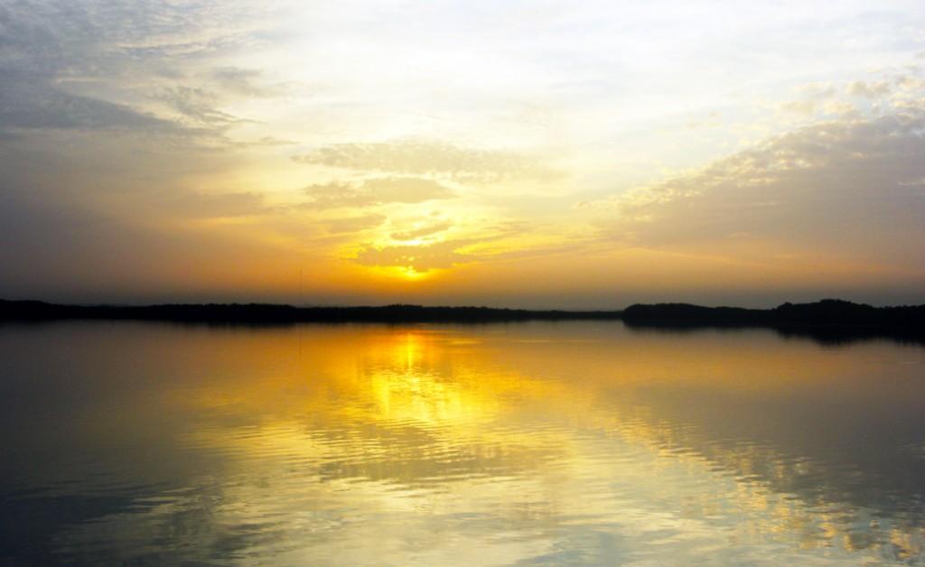 Gambia natuur