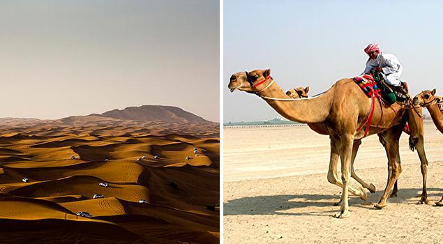 Bezienswaardigheden Dubai - Sahara