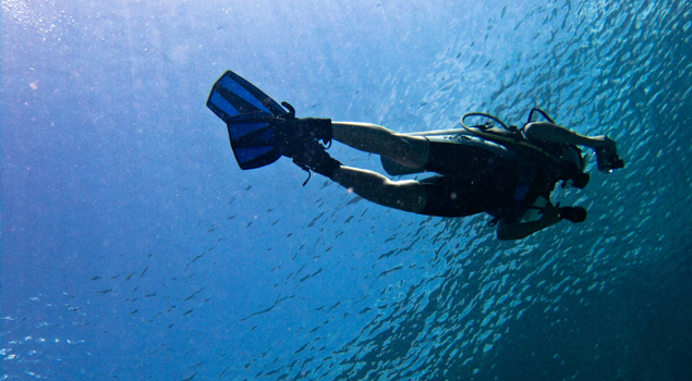 duiken-dubai