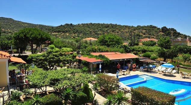 Het zwembad en de groene omgeving