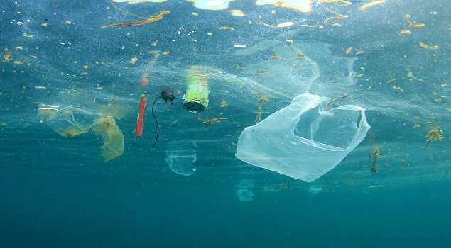 Plastic zee